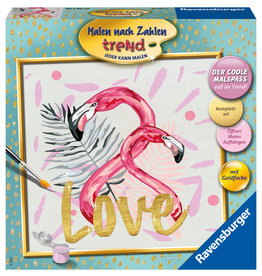 Ravensburger Schilderen op nummer 287970 Love