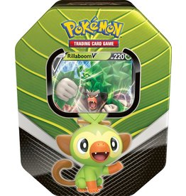 Pokemon Pokémon TCG Spring Tin 2020 - Galar Partners - Rillaboom