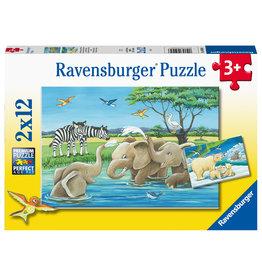 Ravensburger Ravensburger Puzzel 050956 Jonge dieren uit de Hele Wereld (2x12 Stukjes)