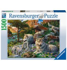 Ravensburger Ravensburger Puzzel 165988 Wolfroedel (1500 Stukjes)