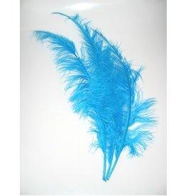 Spadonis veren turquoise (Piet veren) ± 50cm
