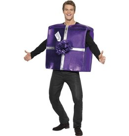 Kerst Cadeau Kostuum