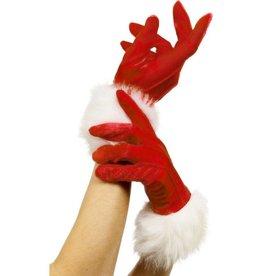 Kerst Handschoenen