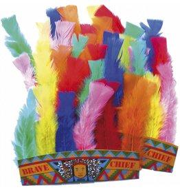 Tiara Indianen (6 stuks)