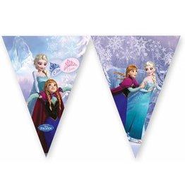 Vlaggenlijn Frozen Elsa en Anna