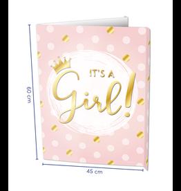 Window Signs - It's a Girl!