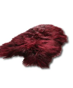 Icelandic sheepskin - Burgundy Red