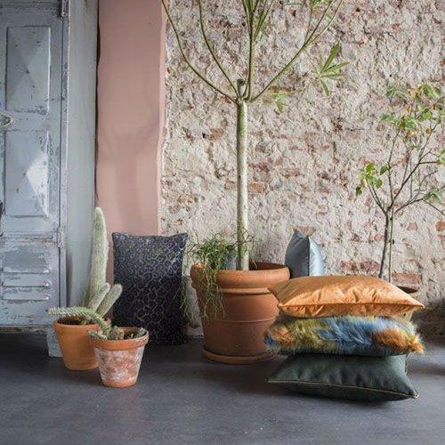 Raaf Decorative Cushions