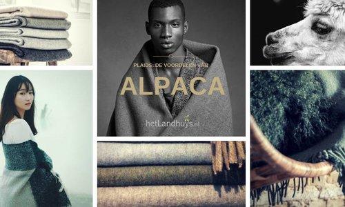 Plaids:  De voordelen van Alpaca