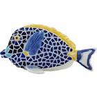 Barcino Design Surgeonfish