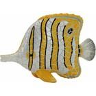 Barcino Design Buttreflyfish