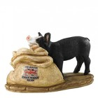 Border Fine Arts Mr Hoggs Piggy Wiggy Nuts