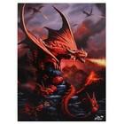 Anne Stokes Fire Dragon  (50x70 Canvas)