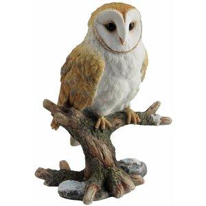 Studio Collection  Barn Owl  on branch