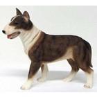 Castagna Bull terrier