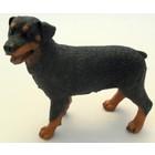 Castagna Rottweiler