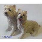 Castagna West Highland Terrier