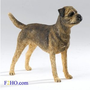 Country Artists Border Terrier