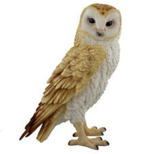 Studio Collection Barn Owl (Natural World)
