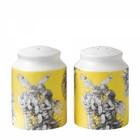 Flower Fairies Salt & Pepper (Gorse Fairy)