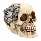 Studio Collection Clockwork Cranium  Skull