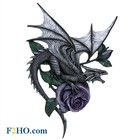 Anne Stokes Dragon Beauty Wall Plaque
