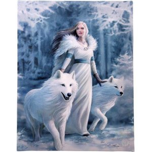 Anne Stokes Winter Guardian (Anne Stokes) 19x25 Canvas