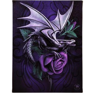 Anne Stokes Dragon beauty (Anne Stokes) 19x25 Canvas