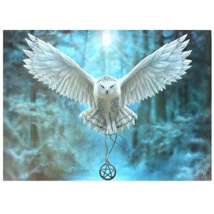 Anne Stokes Awake Your Magic 50x70 Canvas