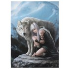 Anne Stokes Protector 50x70 Canvas