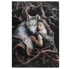 Anne Stokes The Soul Bond 50x70 Canvas