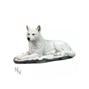Studio Collection White Shadow (Wolf White)