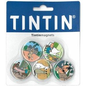 Tintin (Kuifje) Kuifje Magneten (Set van 5)
