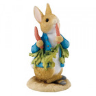 Beatrix Potter / Peter Rabbit Peter Ate Some Radishes