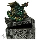 Studio Collection Knowledge Keeper Dragon Box