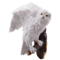 Studio Collection Snow Owl (Wall Ornament)