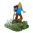 Tintin (Kuifje) Kuifje als een wandelaar