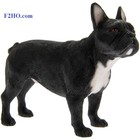 Leonardo Collection Franse Bulldog