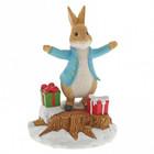Beatrix Potter / Peter Rabbit Peter Rabbit With Presents