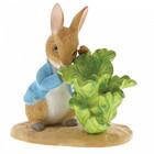 Peter Rabbit (Beatrix Potter) by Border Peter Rabbit with Lettuce