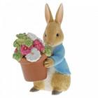 Beatrix Potter / Peter Rabbit Peter Rabbit Brings Flowers