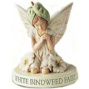 Flower Fairies Akkerwinde Fairy