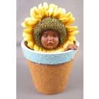 Anne Geddes Sunflower Baby