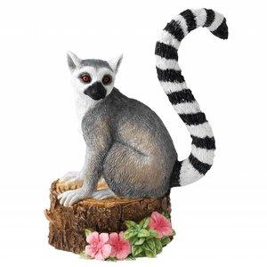 Country Artists Mischievous Lemur