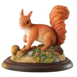 Border Fine Arts Red Squirrel