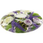 Gilde Dreamlight Provence