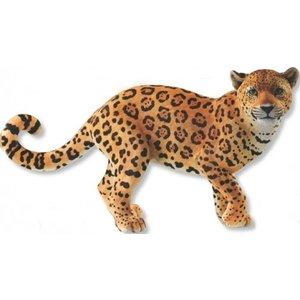 Country Artists Golden Jaguar