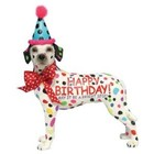 Westland (Happy Birthday) Dalmation Happy Birthday