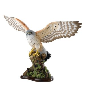 Border Fine Arts Kestrel (Torenvalk)
