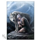 Anne Stokes Protector